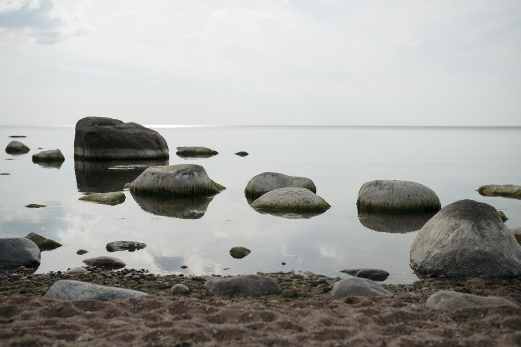 Lina Aiduke Photography summer 053
