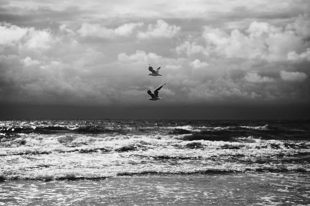 Lina Aiduke photography LC010
