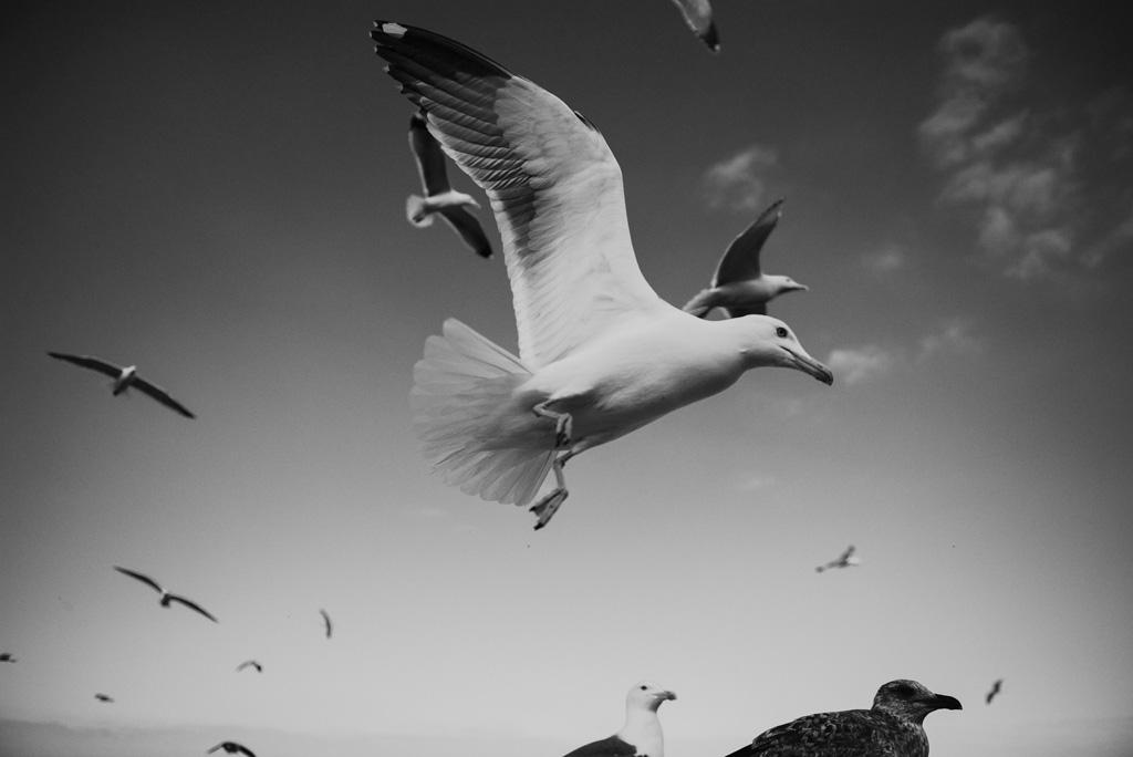 Morocco Aiduke Photography blog - 040