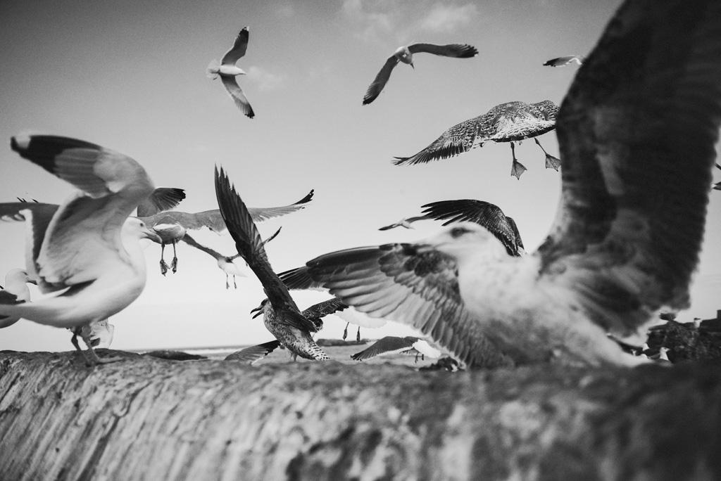 Morocco Aiduke Photography blog - 041