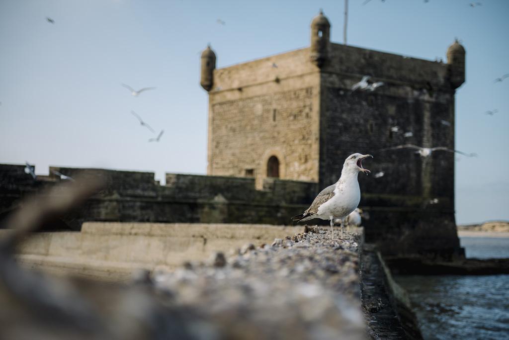 Morocco Aiduke Photography blog - 044