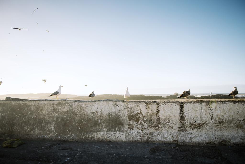 Morocco Aiduke Photography blog - 107
