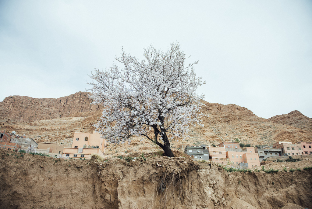 Morocco Aiduke Photography blog - 158