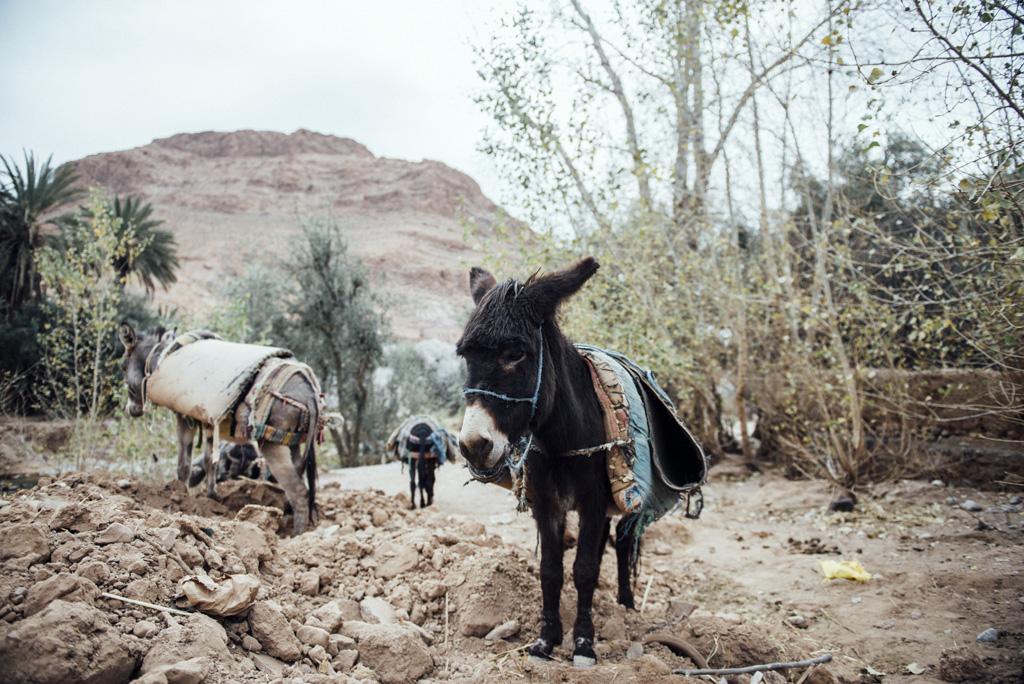 Morocco Aiduke Photography blog - 161