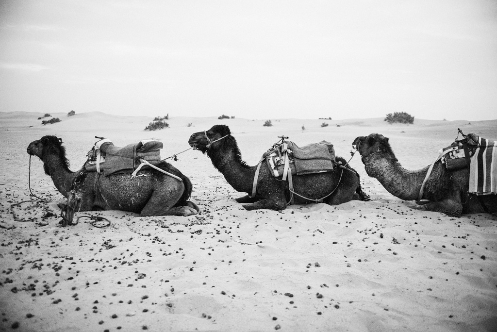 Morocco Aiduke Photography blog - 166