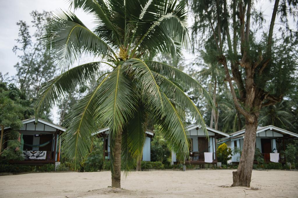 Tailandas 005