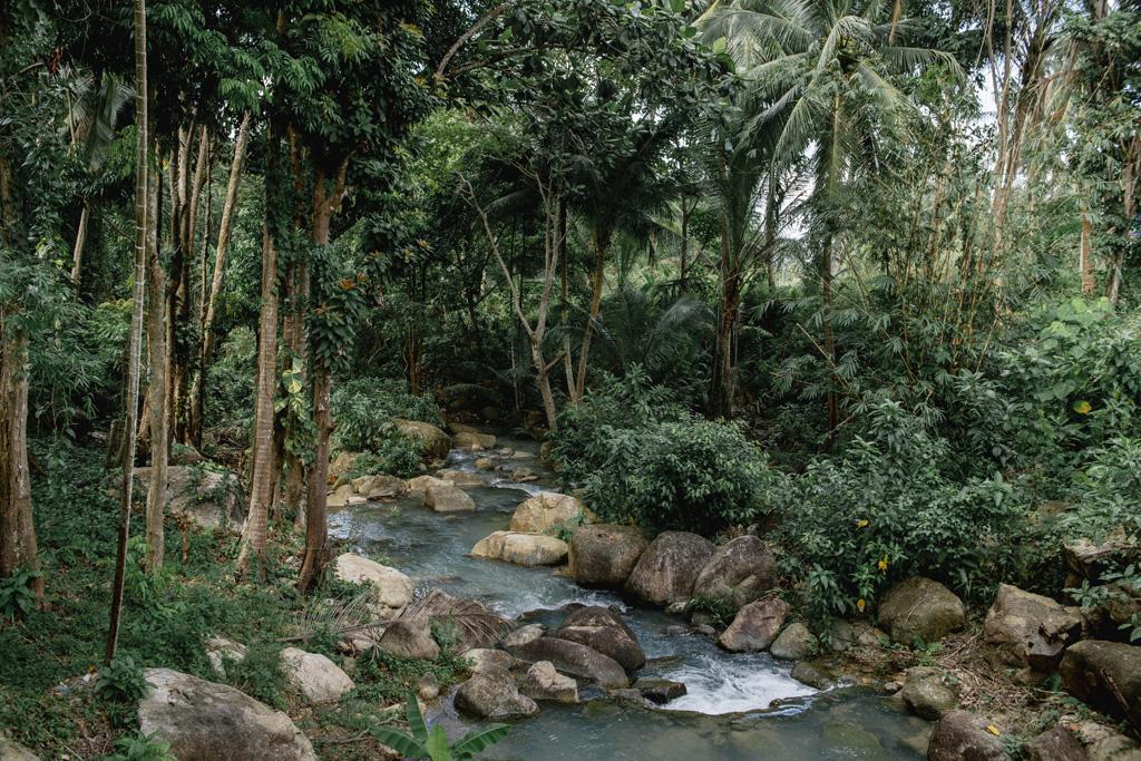 Tailandas 018